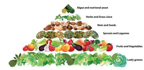RAW-FOOD-PYRAMID