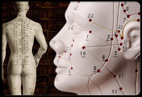 acupuncture-s2-photo-of-pressure-points(2)